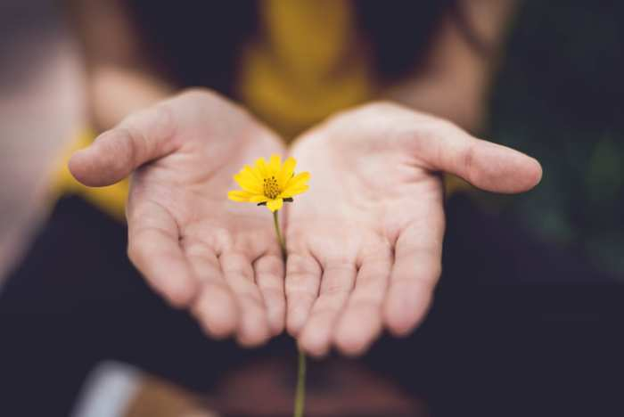 Come farsi perdonare da una ragazza delusa, da un ragazzo, un tradimento, da un amico